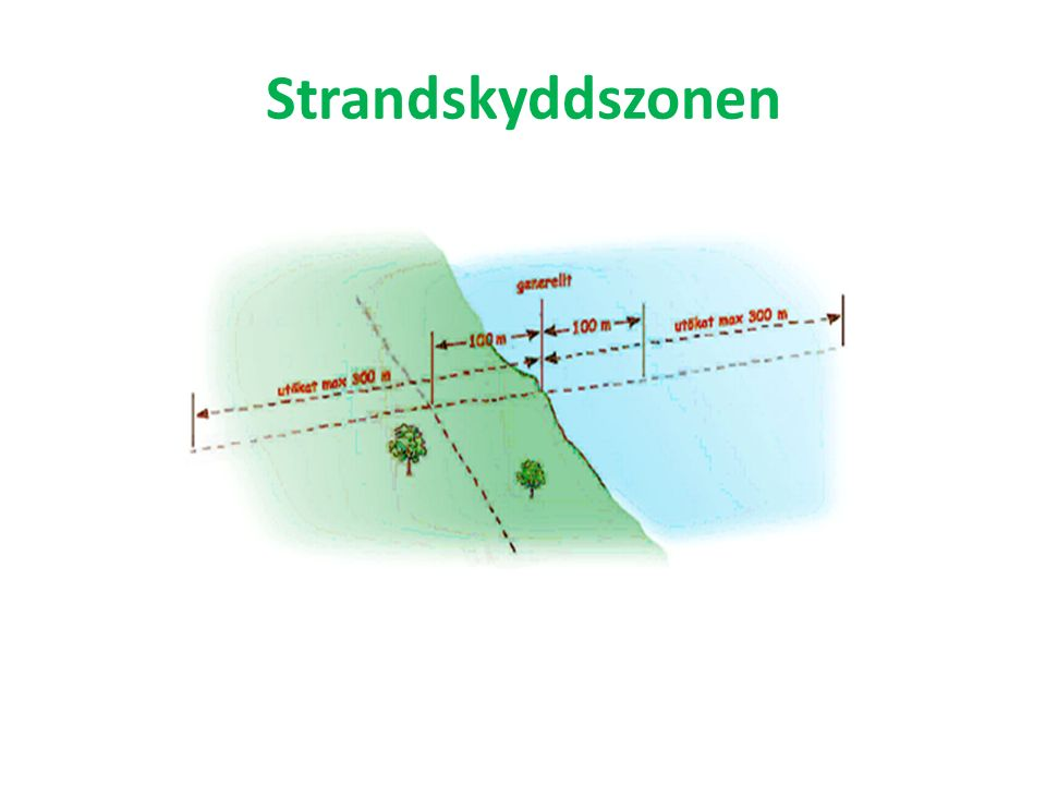 Strandskyddszonen