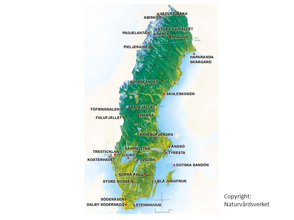 Copyright: Naturvårdsverket