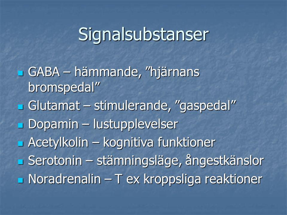 Signalsubstanser GABA – hämmande, hjärnans bromspedal GABA – hämmande, hjärnans bromspedal Glutamat – stimulerande, gaspedal Glutamat – stimulerande, gaspedal Dopamin – lustupplevelser Dopamin – lustupplevelser Acetylkolin – kognitiva funktioner Acetylkolin – kognitiva funktioner Serotonin – stämningsläge, ångestkänslor Serotonin – stämningsläge, ångestkänslor Noradrenalin – T ex kroppsliga reaktioner Noradrenalin – T ex kroppsliga reaktioner