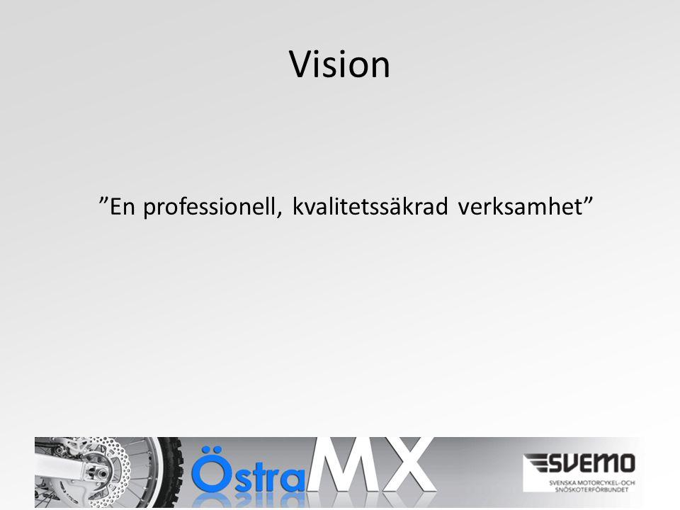Vision En professionell, kvalitetssäkrad verksamhet