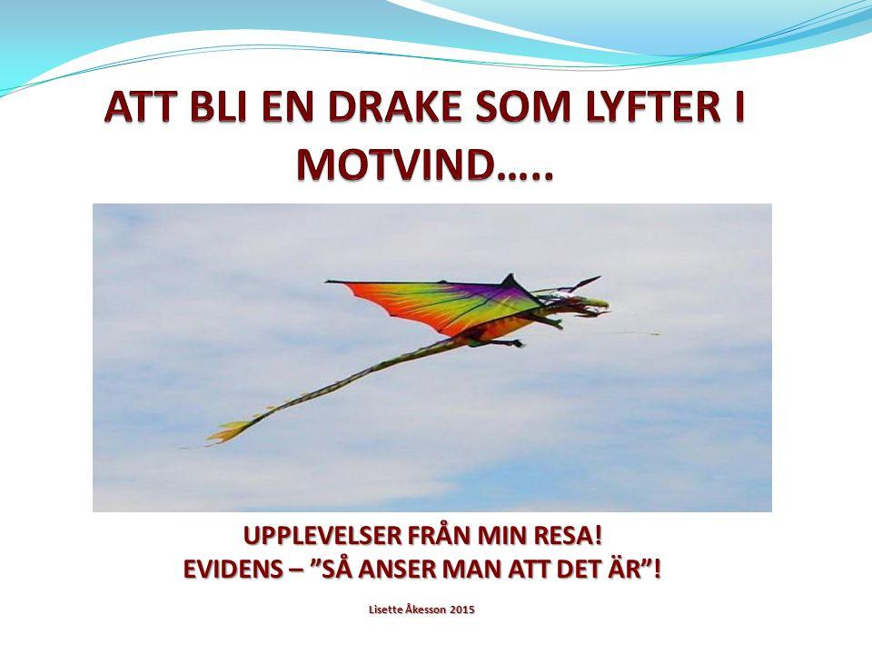 UPPLEVELSER FRÅN MIN RESA! EVIDENS – SÅ ANSER MAN ATT DET ÄR ! Lisette Åkesson 2015