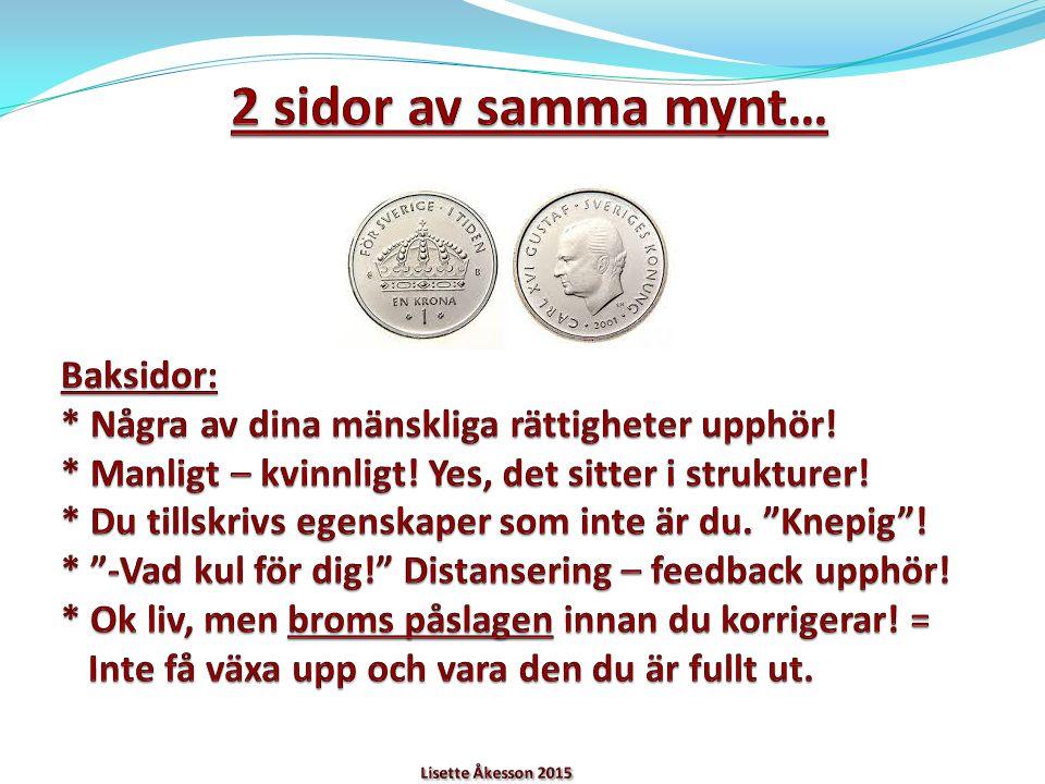 2 VIKTIGA TERMER/FENOMEN PROJEKTION – DU SER ANDRA ELLER ANDRA SER DIG MED LJUSA/FLÄCKIGA /MÖRKA GLASÖGON.