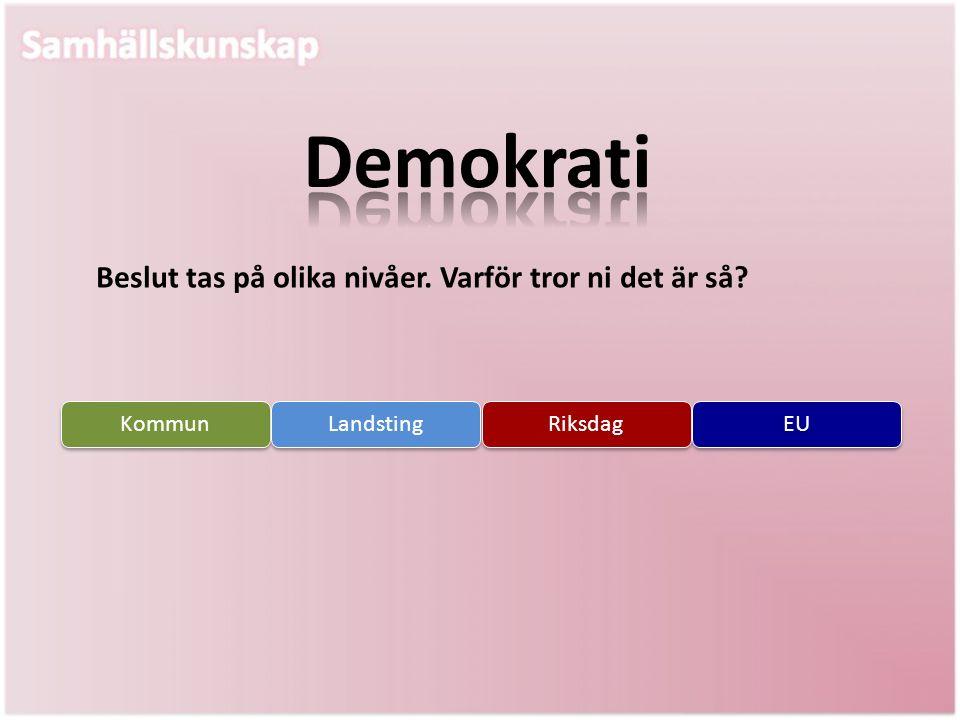 Beslut tas på olika nivåer. Varför tror ni det är så? Kommun Landsting Riksdag EU