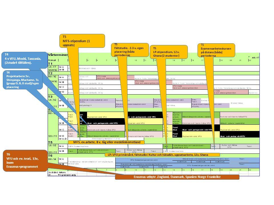 T4 4 v VFU, Moshi, Tanzania, (2studx4 tillfällen). T5 Fältstudie, 2-3 v, egen placering (båda perioderna ) T6 VFU och ev. teori, 13v, inom Erasmus+pro