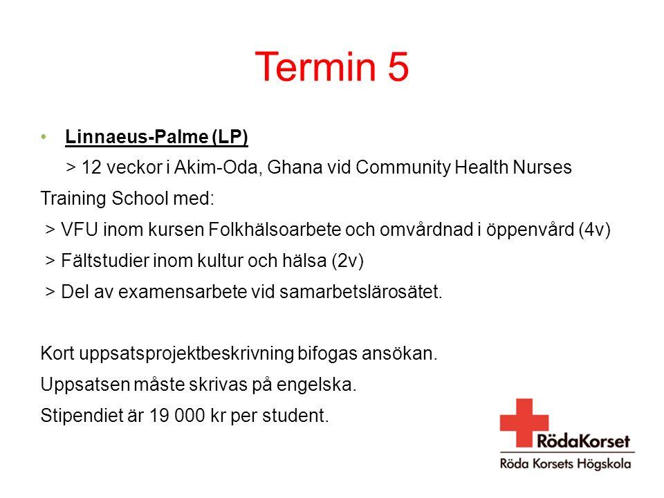 Termin 5 Linnaeus-Palme (LP) > 12 veckor i Akim-Oda, Ghana vid Community Health Nurses Training School med: > VFU inom kursen Folkhälsoarbete och omvårdnad i öppenvård (4v) > Fältstudier inom kultur och hälsa (2v) > Del av examensarbete vid samarbetslärosätet.