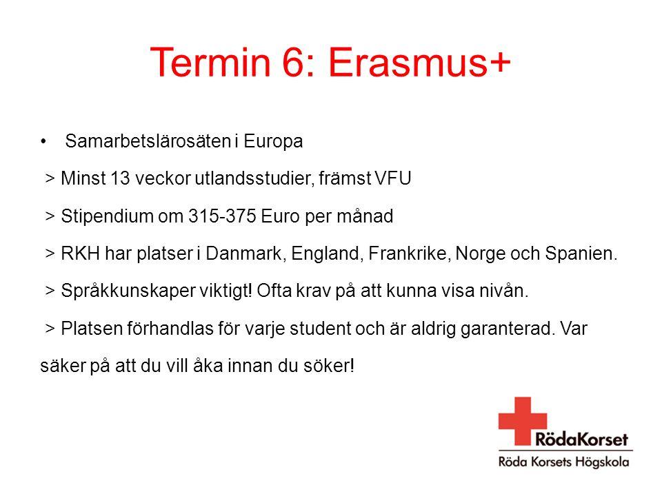 Termin 6: Erasmus+ Samarbetslärosäten i Europa > Minst 13 veckor utlandsstudier, främst VFU > Stipendium om 315-375 Euro per månad > RKH har platser i Danmark, England, Frankrike, Norge och Spanien.