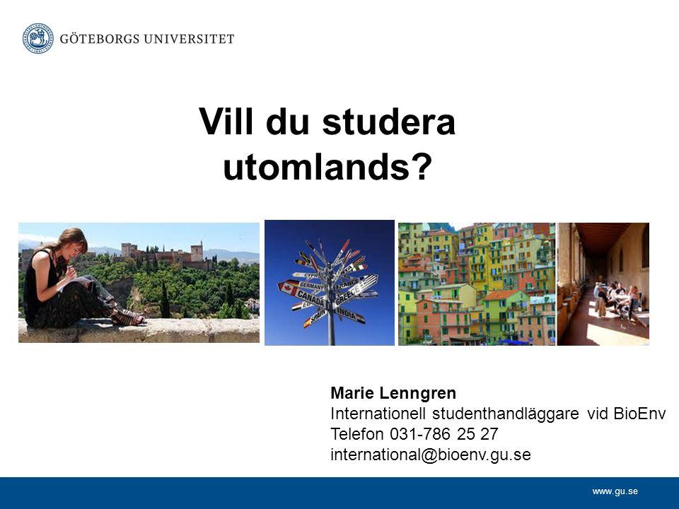 www.gu.se Vill du studera utomlands? Marie Lenngren Internationell studenthandläggare vid BioEnv Telefon 031-786 25 27 international@bioenv.gu.se
