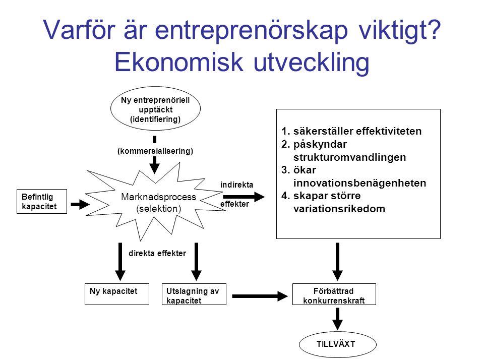Varför är entreprenörskap viktigt.