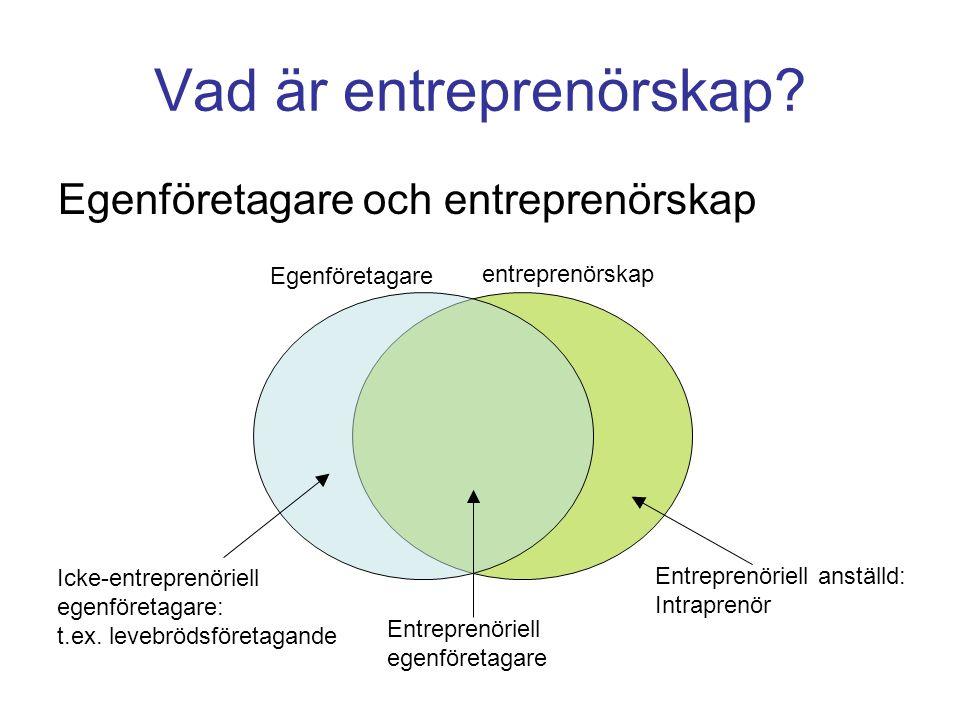 Entreprenör och intraprenör FöretagareAnställd EntreprenörInnovatörer, risktagare Intraprenörer FörvaltandeSaknar ambitioner att växa och/eller förändra Företagsledare