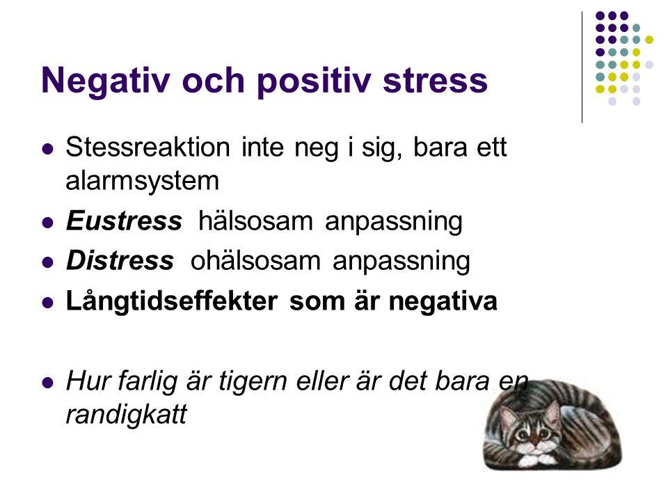 Negativ och positiv stress Stessreaktion inte neg i sig, bara ett alarmsystem Eustress hälsosam anpassning Distress ohälsosam anpassning Långtidseffekter som är negativa Hur farlig är tigern eller är det bara en randigkatt