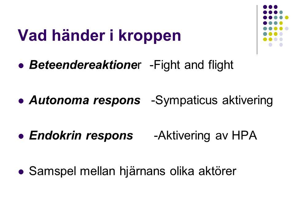 Vad händer i kroppen Beteendereaktioner -Fight and flight Autonoma respons -Sympaticus aktivering Endokrin respons -Aktivering av HPA Samspel mellan hjärnans olika aktörer