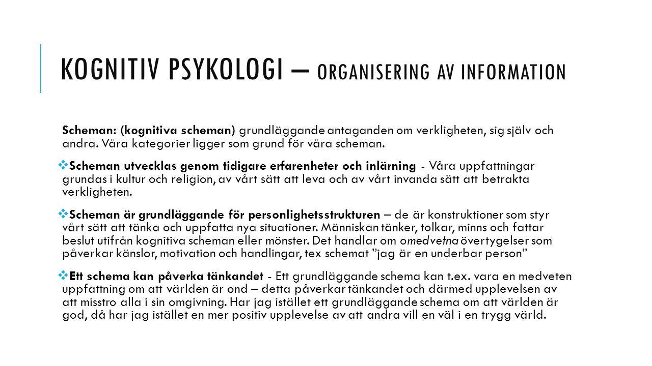 KOGNITIV PSYKOLOGI – ORGANISERING AV INFORMATION Scheman: (kognitiva scheman) grundläggande antaganden om verkligheten, sig själv och andra. Våra kate