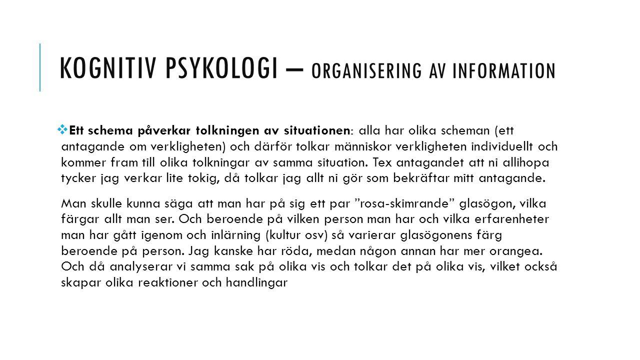 KOGNITIV PSYKOLOGI – ORGANISERING AV INFORMATION  Ett schema påverkar tolkningen av situationen: alla har olika scheman (ett antagande om verklighete