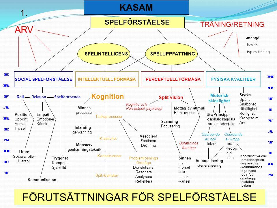 SPELFÖRSTÅELSE SPELINTELLIGENSSPELUPPFATTNING PERCEPTUELL FÖRMÅGAINTELLEKTUELL FÖRMÅGASOCIAL SPELFÖRSTÅELSEFYSISKA KVALITÉER Roll Relation Spelförtroe