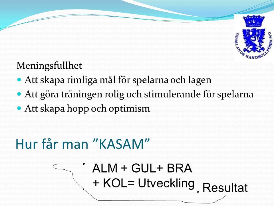 Hur får man KASAM Meningsfullhet Att skapa rimliga mål för spelarna och lagen Att göra träningen rolig och stimulerande för spelarna Att skapa hopp och optimism ALM + GUL+ BRA + KOL= Utveckling Resultat