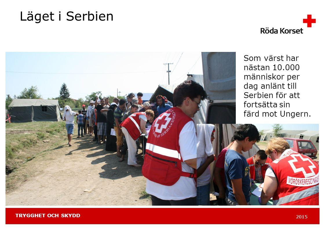 2015 TRYGGHET OCH SKYDD Läget i Serbien Som värst har nästan 10.000 människor per dag anlänt till Serbien för att fortsätta sin färd mot Ungern.