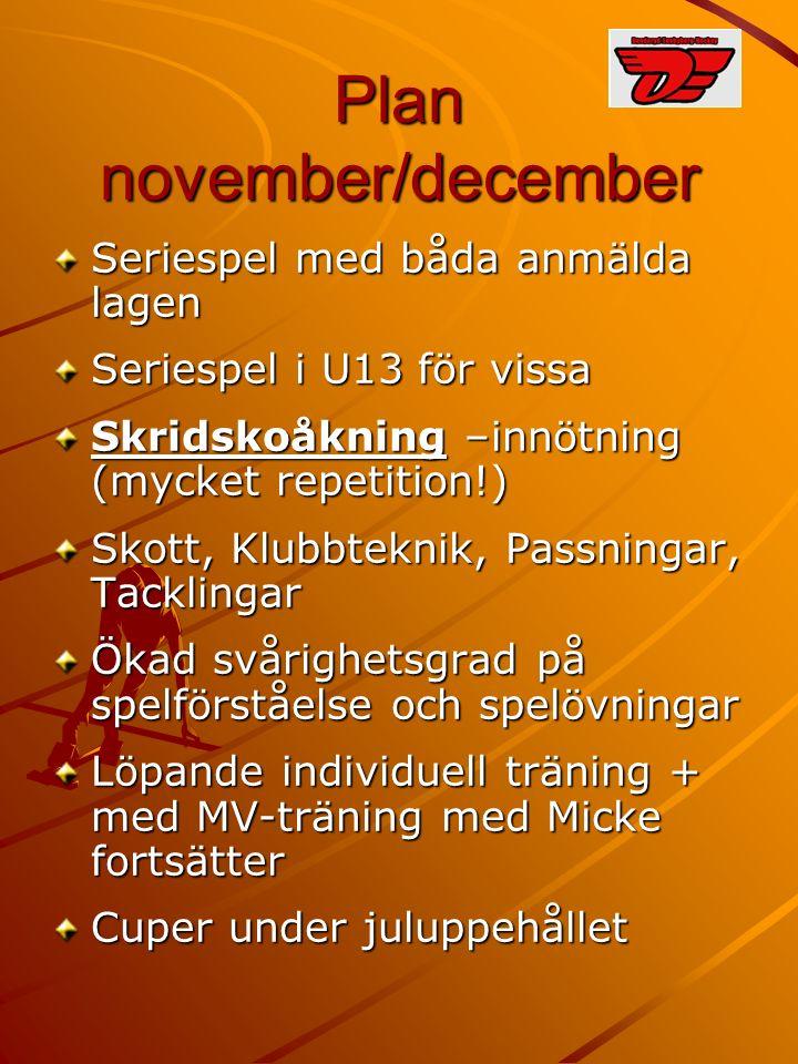 Plan november/december Seriespel med båda anmälda lagen Seriespel i U13 för vissa Skridskoåkning –innötning (mycket repetition!) Skott, Klubbteknik, P