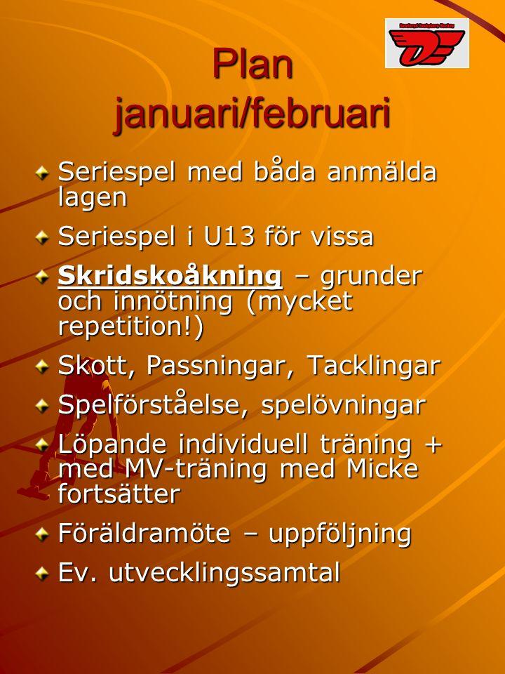 Plan januari/februari Seriespel med båda anmälda lagen Seriespel i U13 för vissa Skridskoåkning – grunder och innötning (mycket repetition!) Skott, Passningar, Tacklingar Spelförståelse, spelövningar Löpande individuell träning + med MV-träning med Micke fortsätter Föräldramöte – uppföljning Ev.