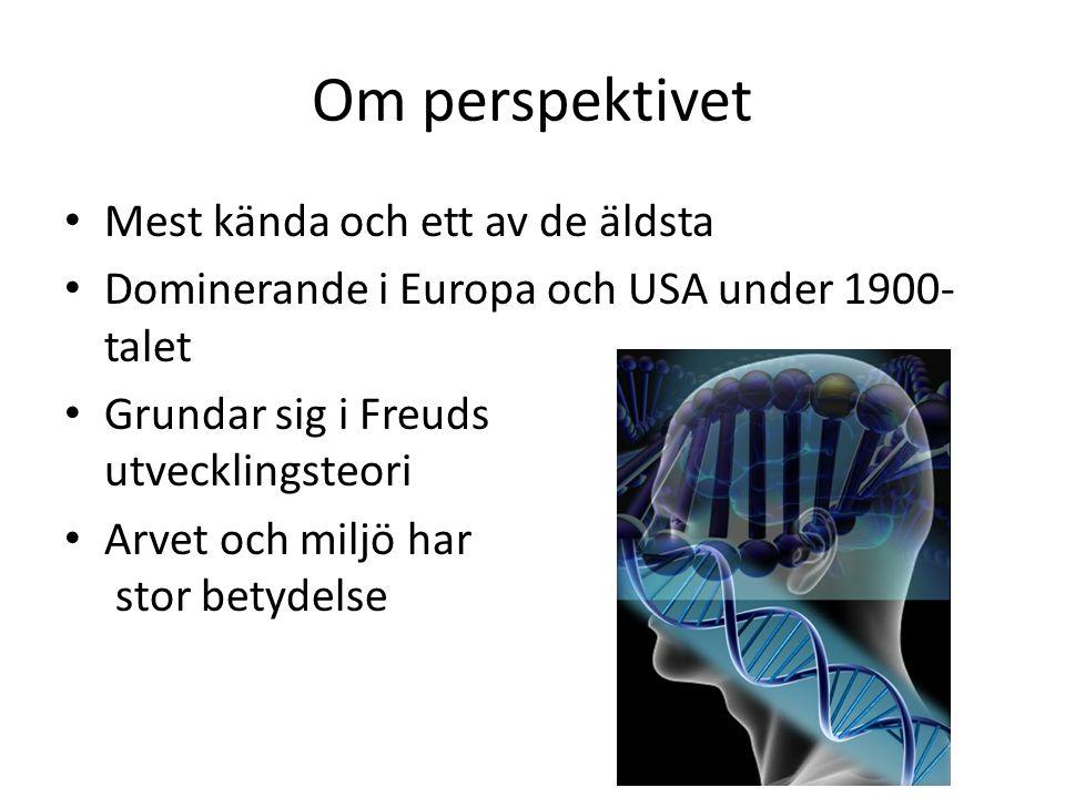 Om perspektivet Mest kända och ett av de äldsta Dominerande i Europa och USA under 1900- talet Grundar sig i Freuds utvecklingsteori Arvet och miljö har stor betydelse