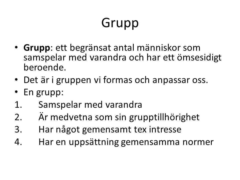 Grupp Grupp: ett begränsat antal människor som samspelar med varandra och har ett ömsesidigt beroende. Det är i gruppen vi formas och anpassar oss. En