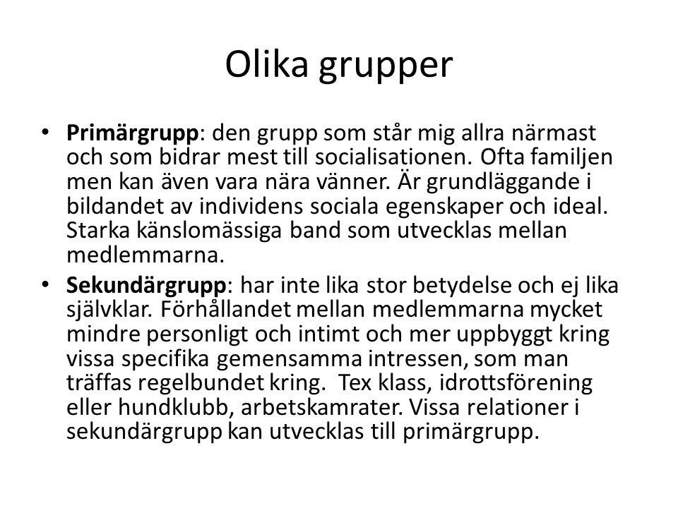 Olika grupper Primärgrupp: den grupp som står mig allra närmast och som bidrar mest till socialisationen. Ofta familjen men kan även vara nära vänner.