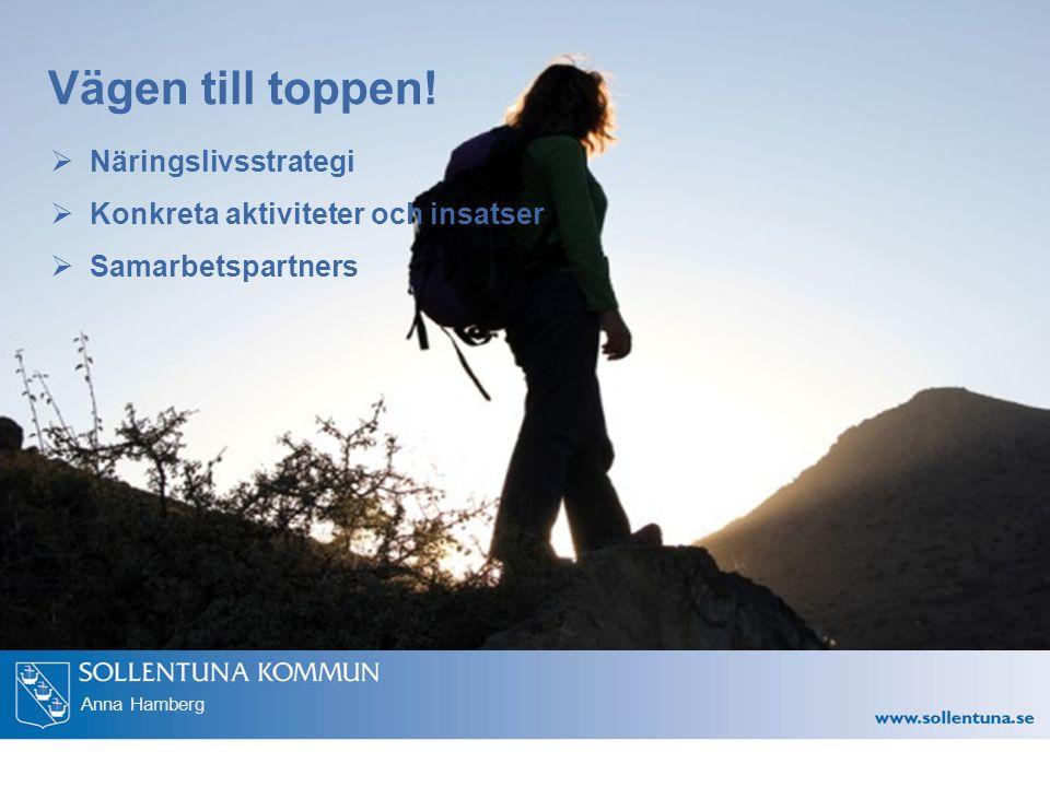 Anna Hamberg Vägen till toppen.