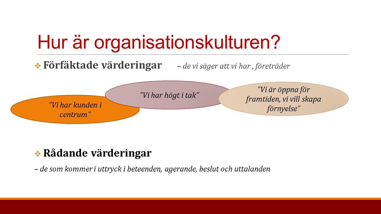 Hur är organisationskulturen.
