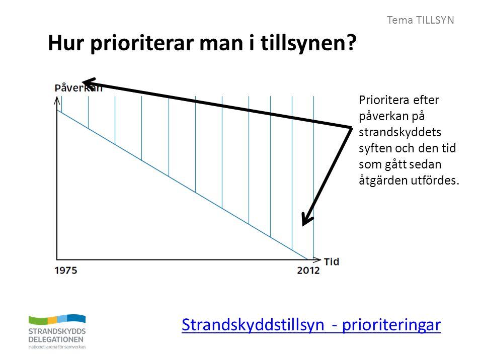 Tema TILLSYN Hur prioriterar man i tillsynen. Kan man prioritera i tillsynen.