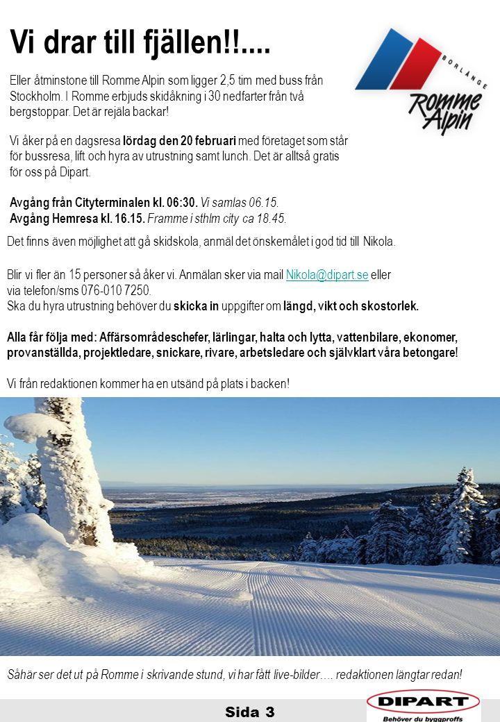 Sida 3 Vi drar till fjällen!!.... Eller åtminstone till Romme Alpin som ligger 2,5 tim med buss från Stockholm. I Romme erbjuds skidåkning i 30 nedfar