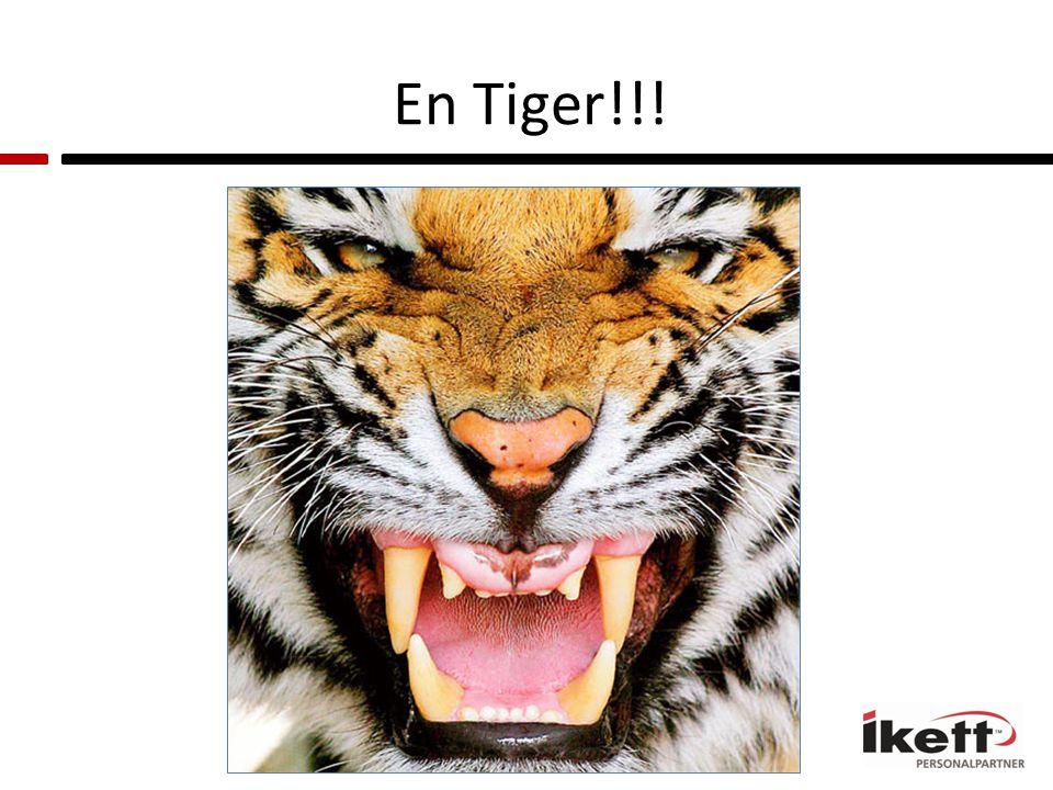 En Tiger!!!