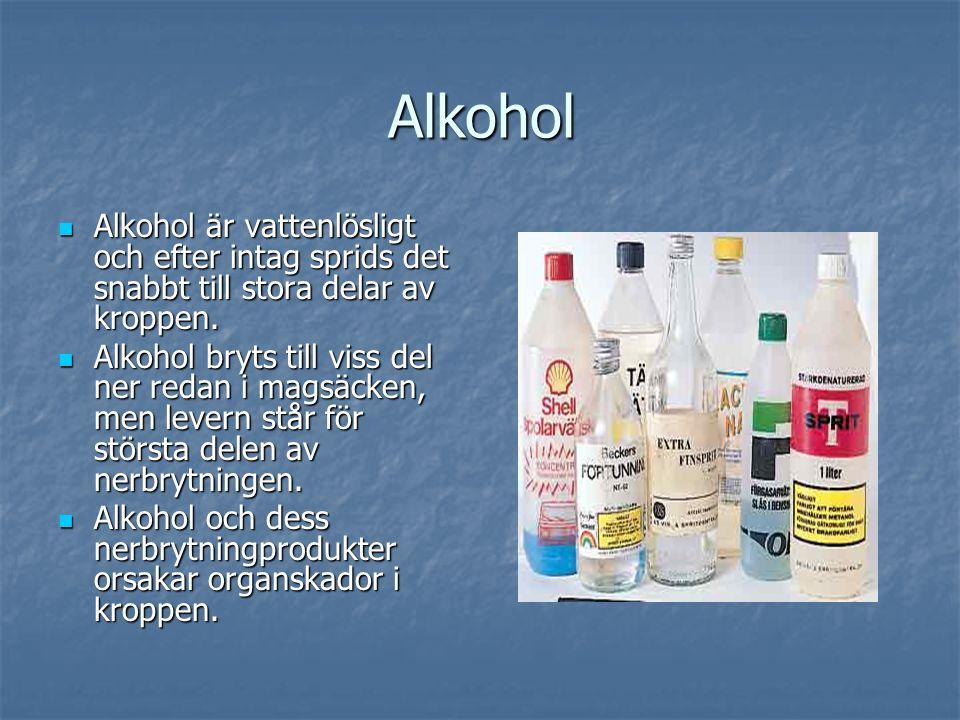 Alkohol Alkohol är vattenlösligt och efter intag sprids det snabbt till stora delar av kroppen.