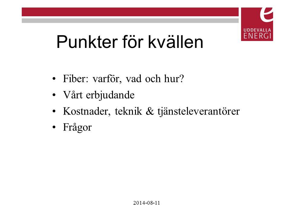 Punkter för kvällen Fiber: varför, vad och hur? Vårt erbjudande Kostnader, teknik & tjänsteleverantörer Frågor 2014-08-11