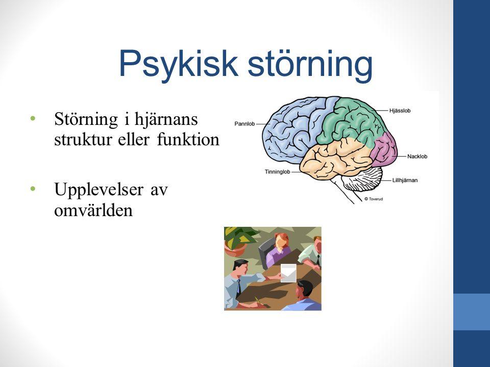 Psykisk störning Störning i hjärnans struktur eller funktion Upplevelser av omvärlden