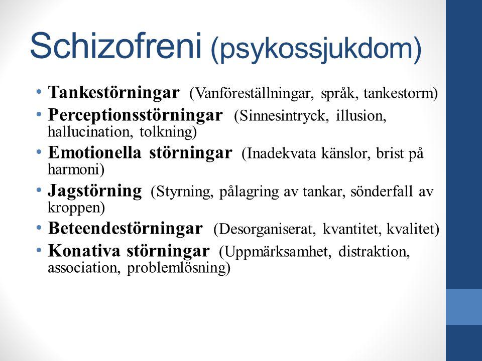 Schizofreni (psykossjukdom) Tankestörningar (Vanföreställningar, språk, tankestorm) Perceptionsstörningar (Sinnesintryck, illusion, hallucination, tol