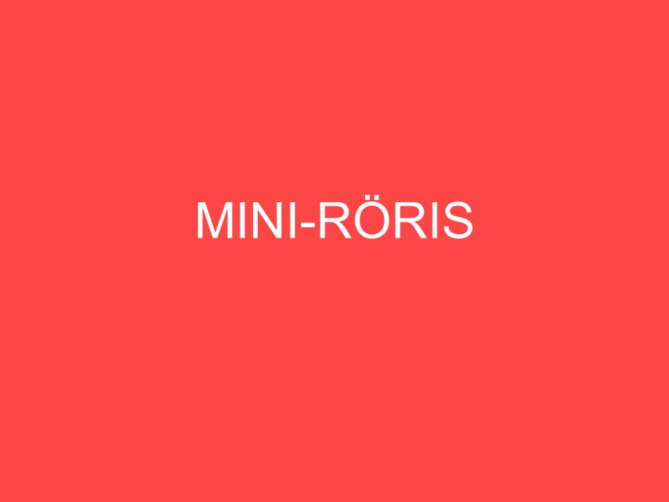 MINI-RÖRIS