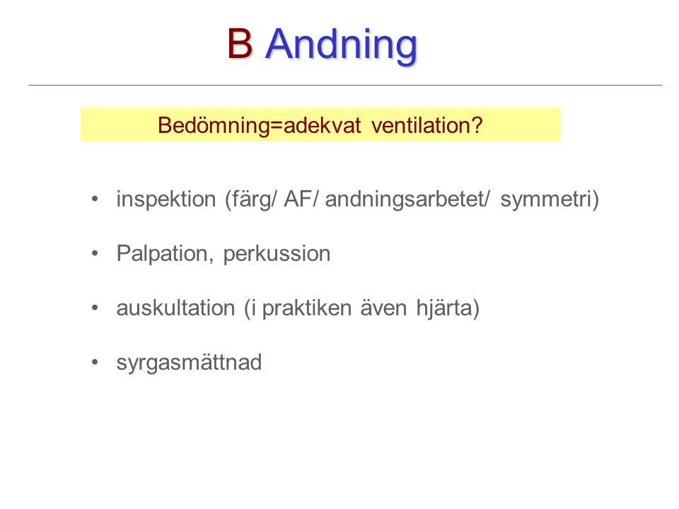 B Andning inspektion (färg/ AF/ andningsarbetet/ symmetri) Palpation, perkussion auskultation (i praktiken även hjärta) syrgasmättnad Bedömning=adekvat ventilation