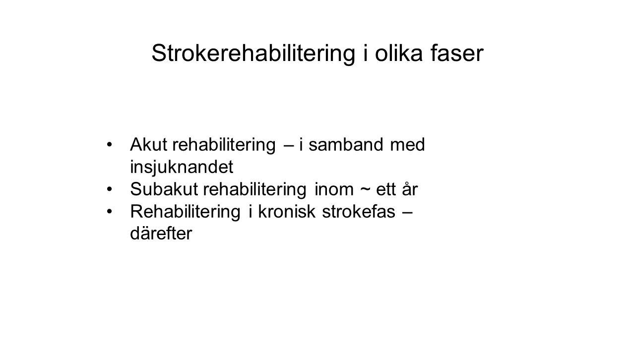Strokerehabilitering i olika faser Akut rehabilitering – i samband med insjuknandet Subakut rehabilitering inom ~ ett år Rehabilitering i kronisk strokefas – därefter
