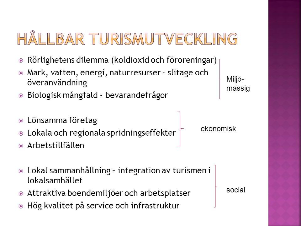  Rörlighetens dilemma (koldioxid och föroreningar)  Mark, vatten, energi, naturresurser - slitage och överanvändning  Biologisk mångfald - bevarand