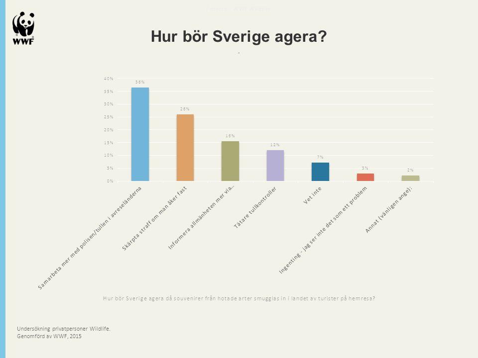 Undersökning privatpersoner Wildlife. Genomförd av WWF, 2015 Futerra - WWF Wildlife Hur bör Sverige agera? - Hur bör Sverige agera då souvenirer från