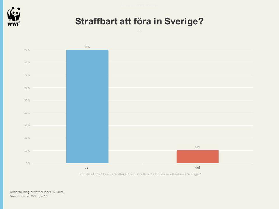Undersökning privatpersoner Wildlife. Genomförd av WWF, 2015 Futerra - WWF Wildlife Straffbart att föra in Sverige? - Tror du att det kan vara illegal