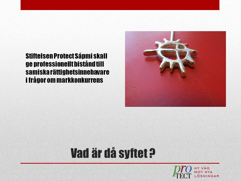 Vad är då syftet ? Stiftelsen Protect Sápmi skall ge professionellt bistånd till samiska rättighetsinnehavare i frågor om markkonkurrens