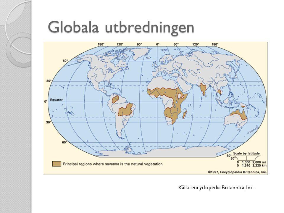 Globala utbredningen Källa: encyclopedia Britannica, Inc.