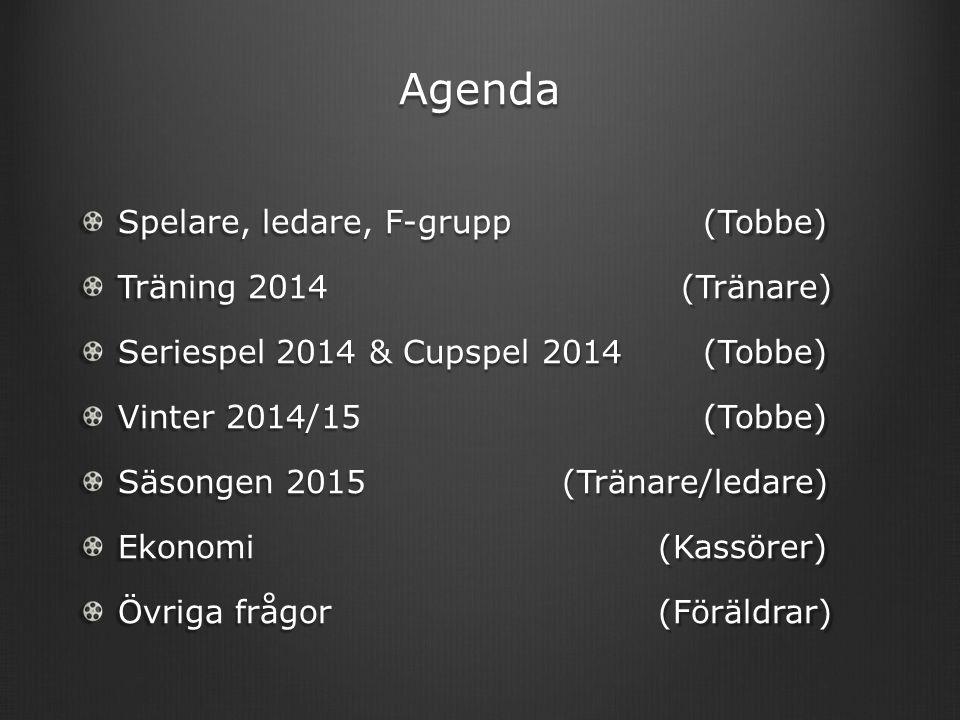 Agenda Spelare, ledare, F-grupp (Tobbe) Träning 2014 (Tränare) Seriespel 2014 & Cupspel 2014 (Tobbe) Vinter 2014/15 (Tobbe) Säsongen 2015(Tränare/ledare) Ekonomi(Kassörer) Övriga frågor(Föräldrar)
