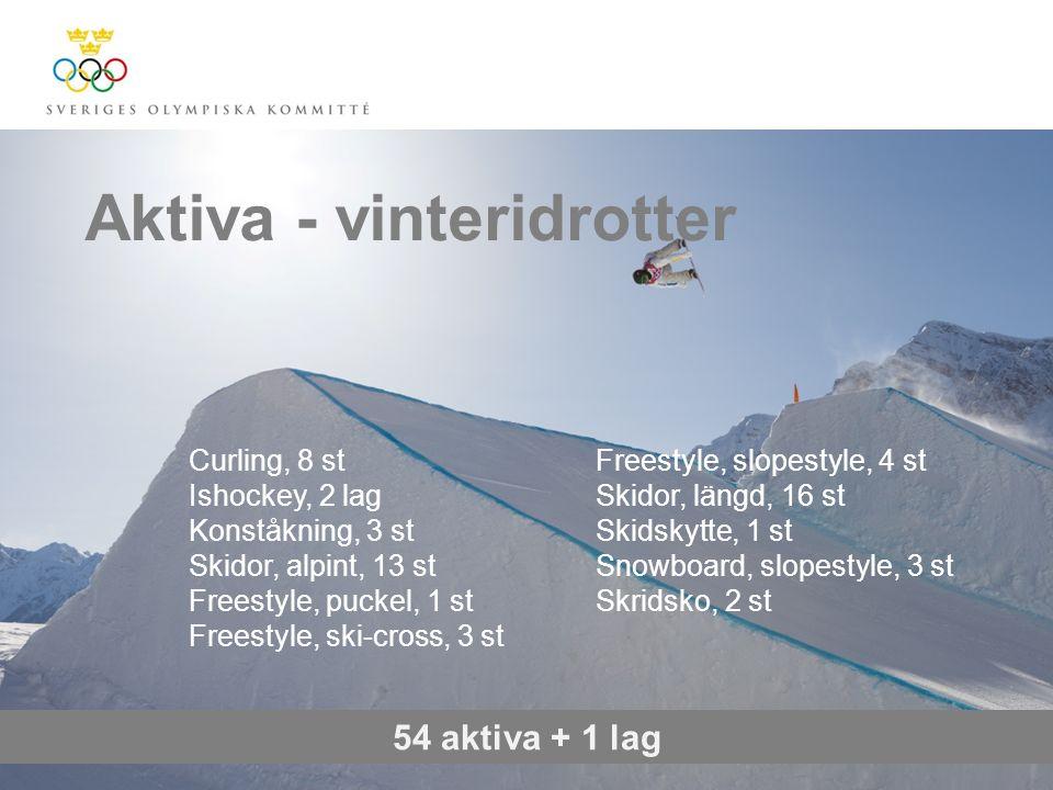 Aktiva - vinteridrotter 54 aktiva + 1 lag Curling, 8 st Ishockey, 2 lag Konståkning, 3 st Skidor, alpint, 13 st Freestyle, puckel, 1 st Freestyle, ski
