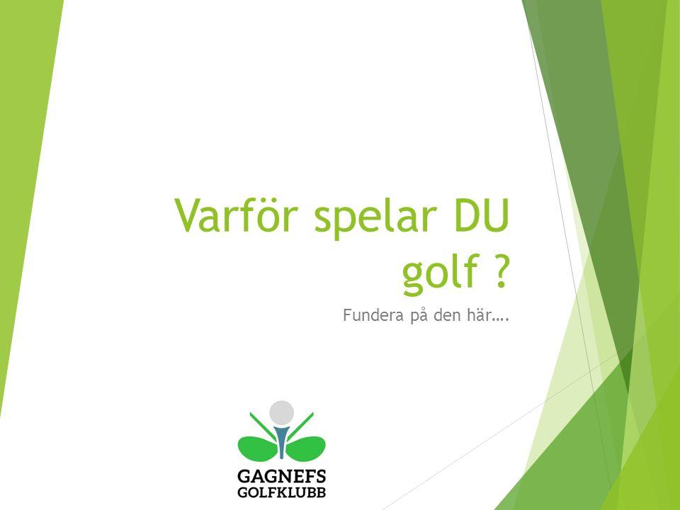 Varför spelar DU golf Fundera på den här….