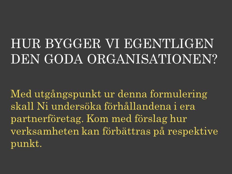 HUR BYGGER VI EGENTLIGEN DEN GODA ORGANISATIONEN? Med utgångspunkt ur denna formulering skall Ni undersöka förhållandena i era partnerföretag. Kom med