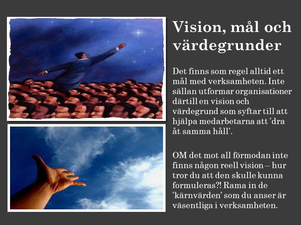 Vision, mål och värdegrunder Det finns som regel alltid ett mål med verksamheten. Inte sällan utformar organisationer därtill en vision och värdegrund