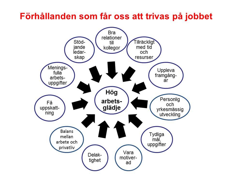 Förhållanden som får oss att trivas på jobbet