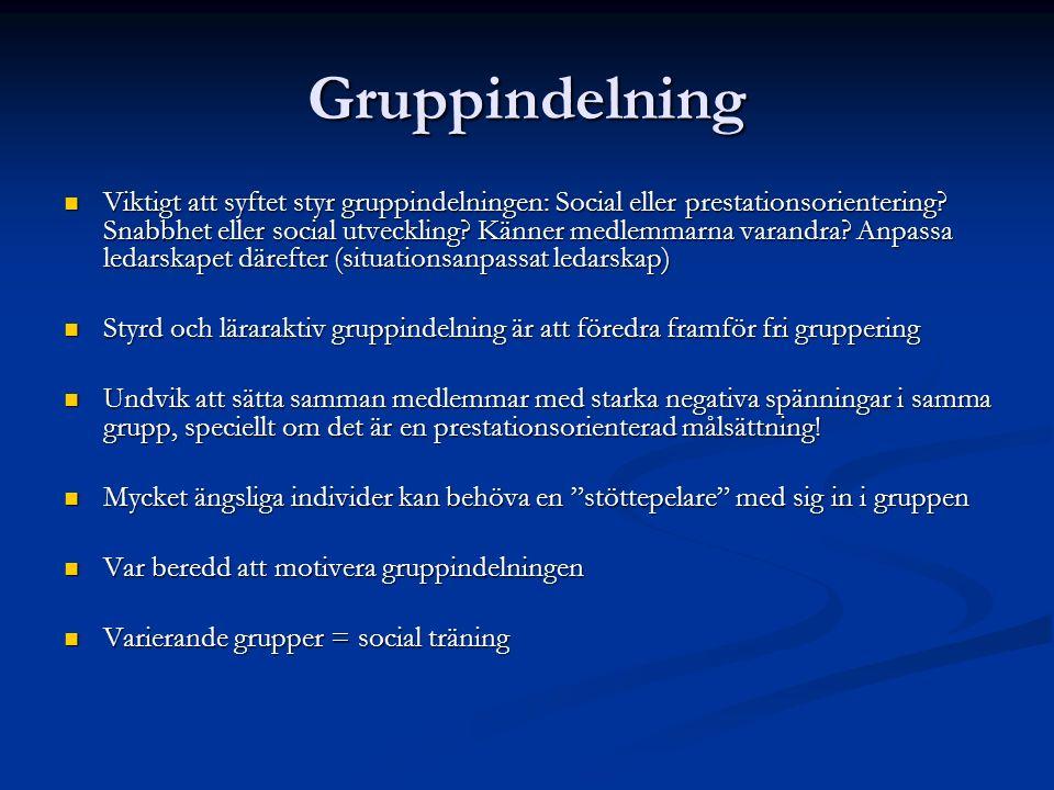 Gruppindelning Viktigt att syftet styr gruppindelningen: Social eller prestationsorientering.