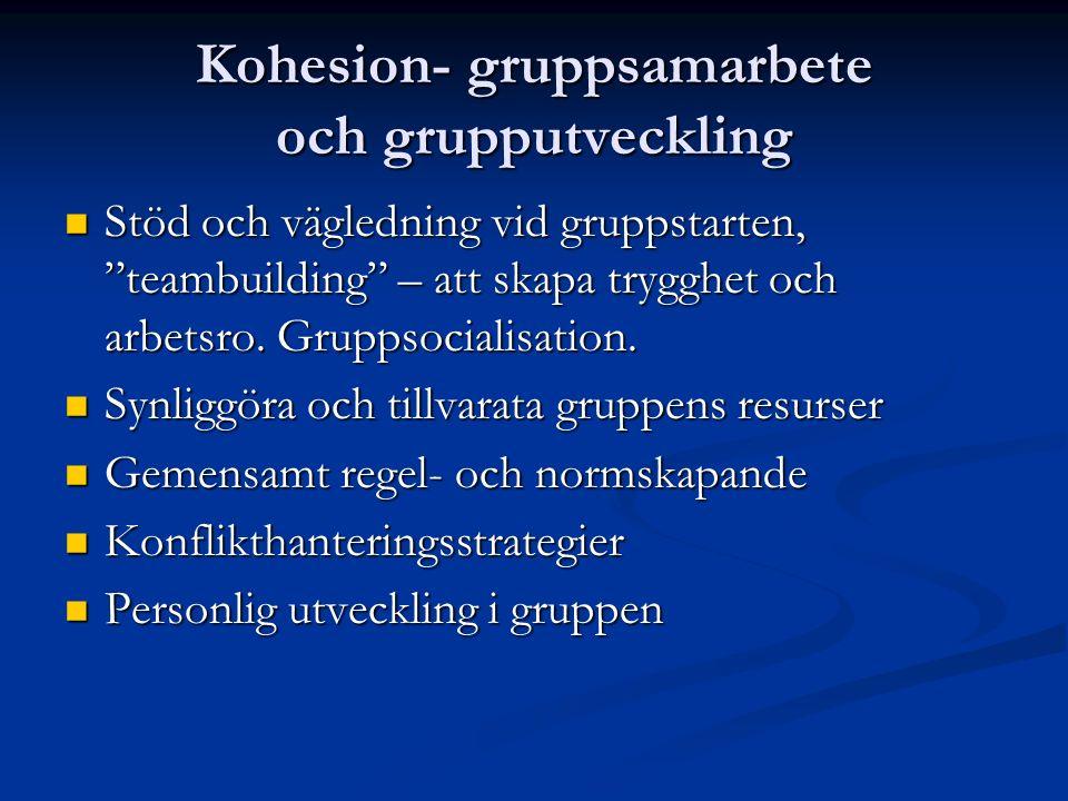 Kohesion- gruppsamarbete och grupputveckling Stöd och vägledning vid gruppstarten, teambuilding – att skapa trygghet och arbetsro.